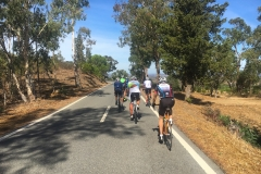 Velo Performance Cycling Camps