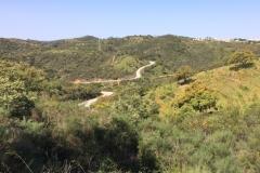 Algarve Cycling Velo Performance