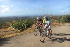 Velo Performance Cycling Holidays - Picota